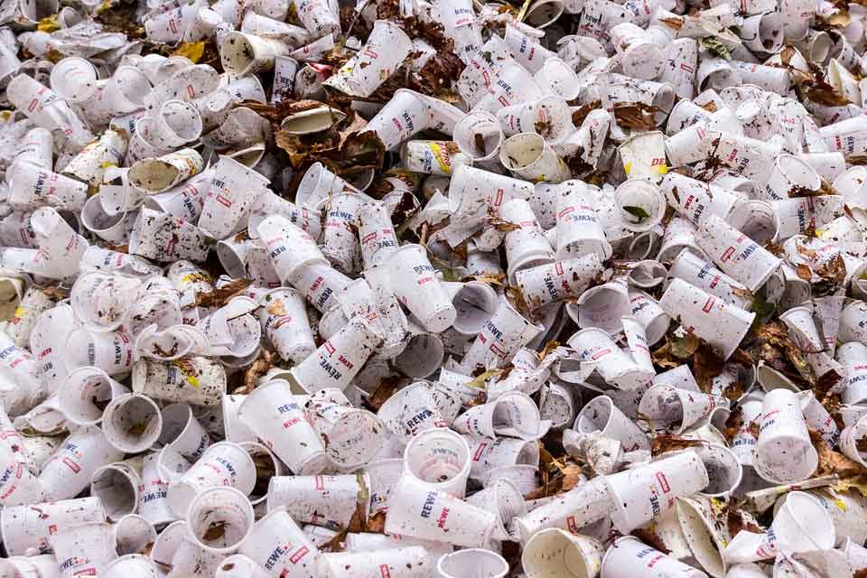 Papierindustrie Umwelt