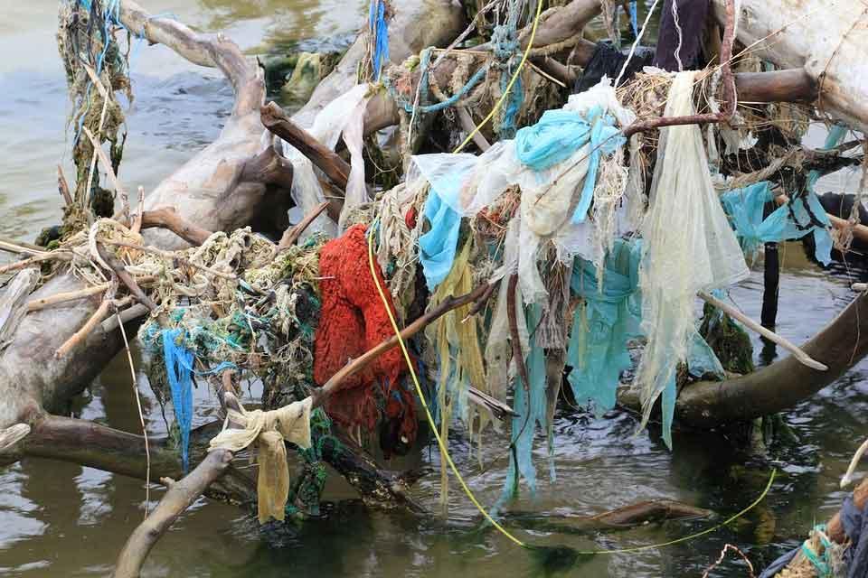 Wasserverschmutzung